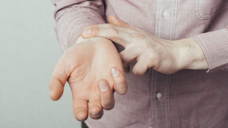 file404 / Shutterstock.com